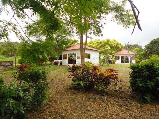 Hosteria Camare: vista de jardines y cabañas