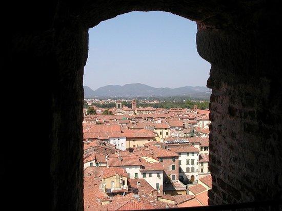 Guinigi Tower: .