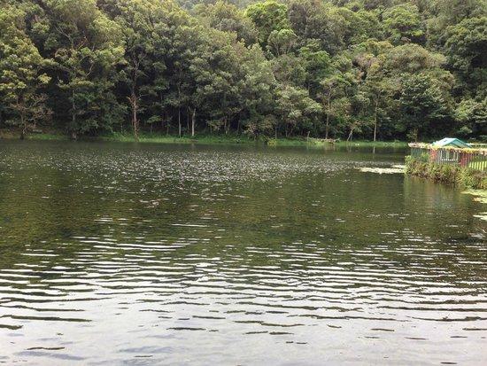Selva Negra Mountain Resort: Laguna