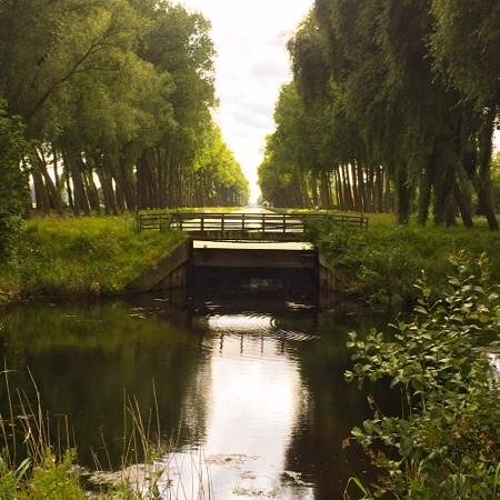Quasimundo Bike Tours : Flemmish Countryside