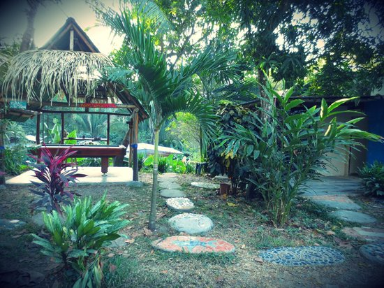 Pura Vida MiniHostel - Santa Teresa: garden