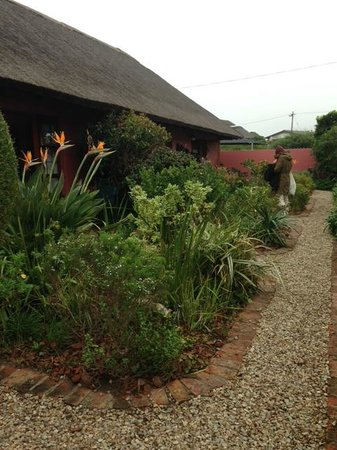 House on Westcliff : Garden outside the rooms