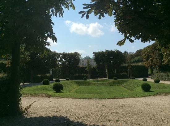 Schloss Belvedere: a shady spot to rest and view the palace