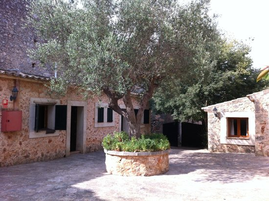 Petit Hotel Rural Son Jorda: Courtyard outside rooms