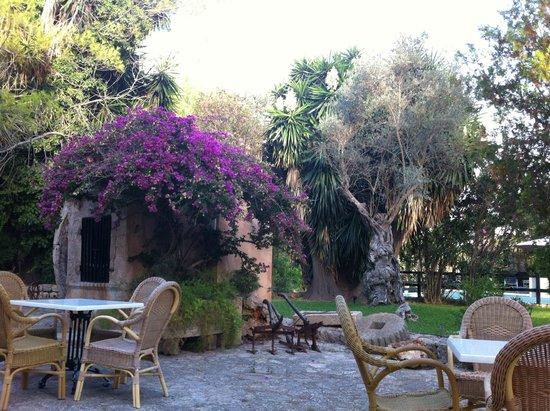Petit Hotel Rural Son Jordà: Outdoor seating area