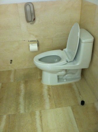The Bryant Park Hotel : Toilet