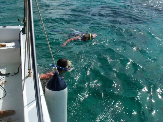 Seakarus Tours: Snorkeling with sharks and stingrays