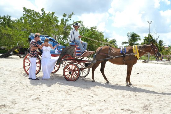Hotel Playa Pesquero Resort, Suite & SPA: horse & carriage to beach