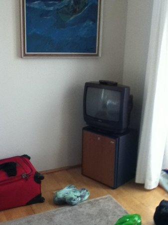 Hotel Odinsve: Old  TV and minifridge.