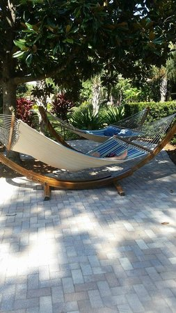 Doubletree by Hilton Orlando at SeaWorld: Relaxation area