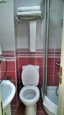 Dara Hotel Istanbul: banheiro