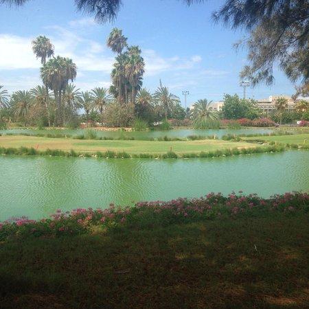 Gran Oasis Resort: golf club