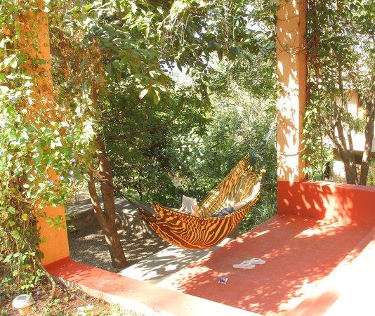 Native Place: Hammock in the garden