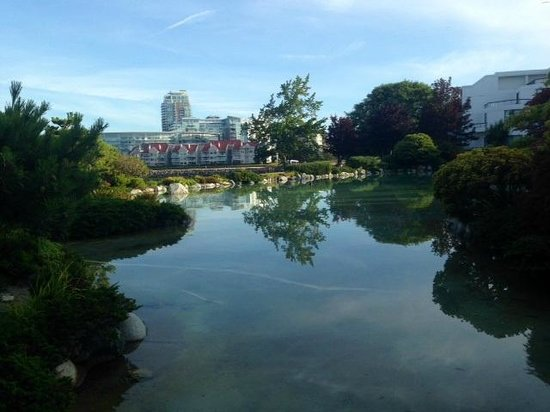 Inn at Laurel Point: View from pond