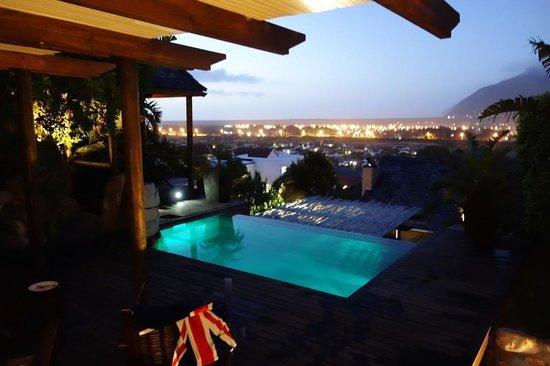 African Violet : Pool