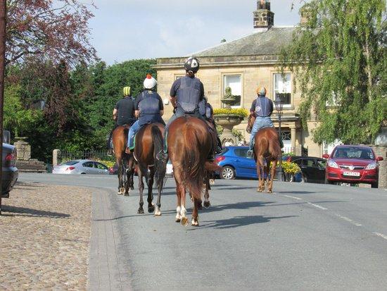 Domus House: Race horses through Masham