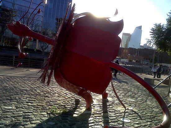 Puerto Madero: Flor Pasionaria - mega escultura de metal