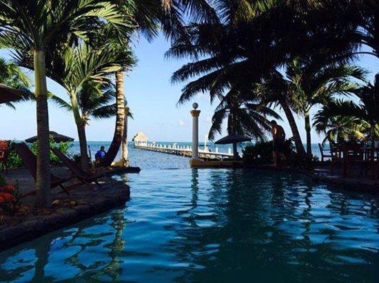 Pelican Reef Villas Resort : Infinity pool