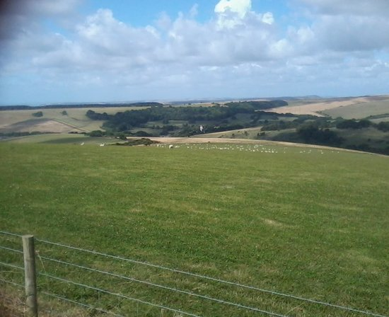 The Paddocks: View on a ride