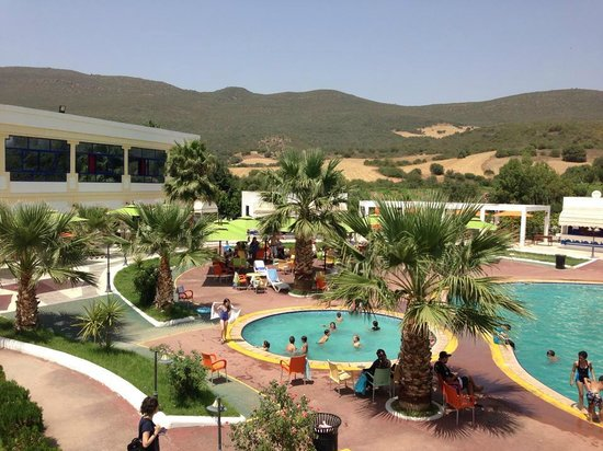 Piscine picture of complexe thermal bouchahrine guelma for Piscine algerie