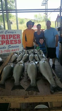 Striper Express Guide Service : Our catch for the day, our at least what we could keep