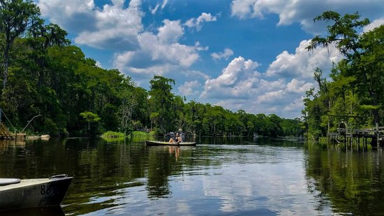 TNT Hideaway Day Tours: Kayaking on the Wakulla river