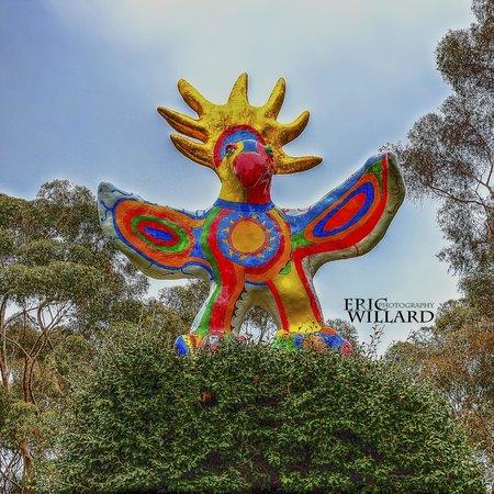 University of California San Diego: The Sun God
