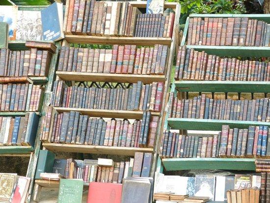 Old Havana: Like to read?
