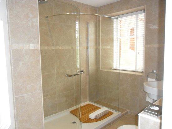 Fonab Castle Hotel: large walk in shower (very good!)