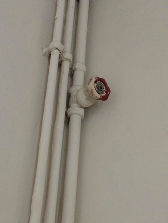 The Old Vicarage: Pipes