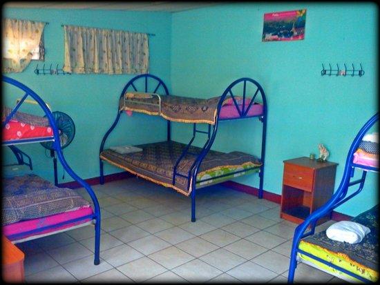 Backpackers Manahuac: Shared room(6-9 people)