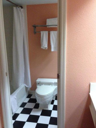Miami Beach Resort and Spa : Pink bathroom, very run down.