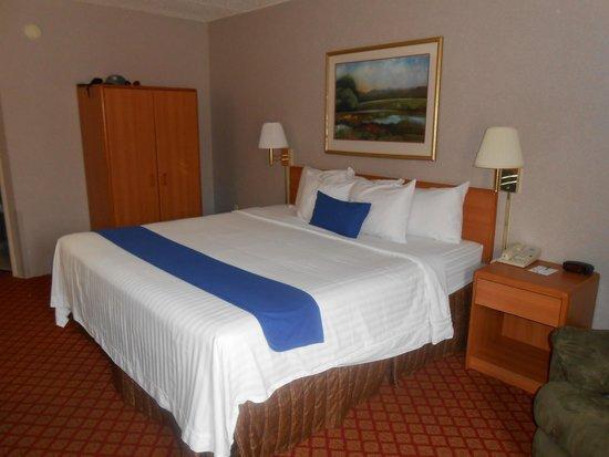 Settle Inn & Suites La Crosse: Bed in King Room