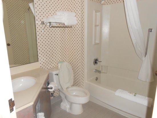 Settle Inn & Suites La Crosse: Accessible bathroom