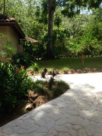 Mystic River Resort: Nice walking paths