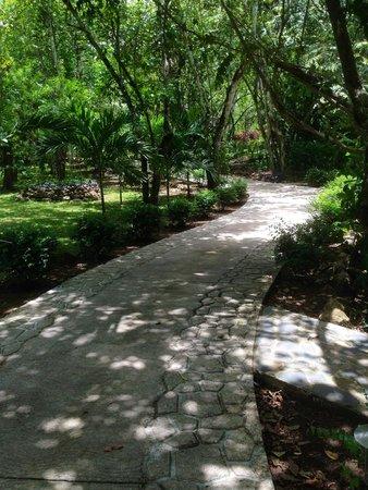Mystic River Resort: Walk to La Ranita