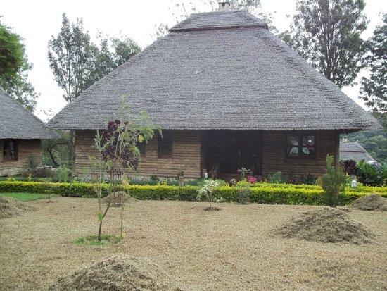 Neptune Ngorongoro Luxury Lodge : Cottage exterior (that's Yours!)