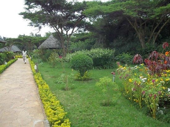Neptune Ngorongoro Luxury Lodge : Entrance path