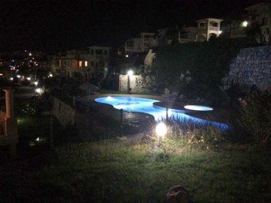 Flamingo Resort: Lily pool by night