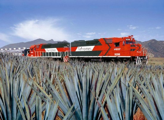 Tequila Express: ventas.tequilaexpress@gmail.com