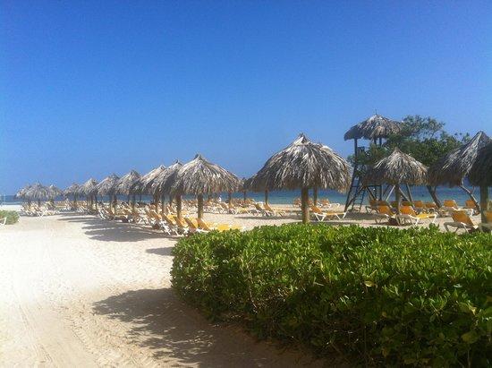 Iberostar Rose Hall Beach Hotel: beach