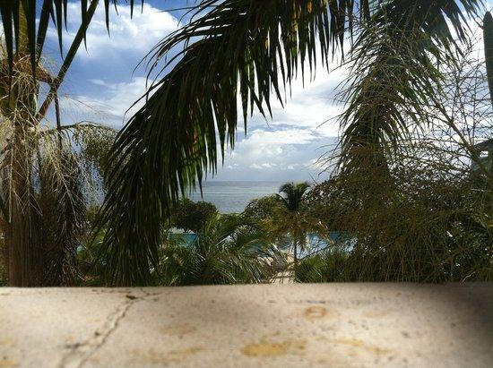 Iberostar Rose Hall Beach Hotel : beach