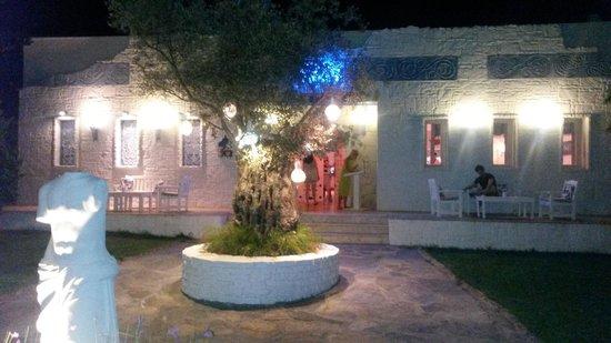 Voyage Torba : Greek Restaurant