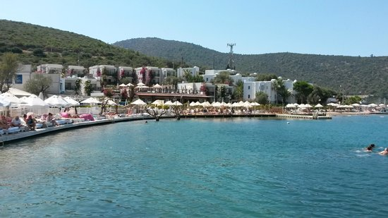 Voyage Torba : The Bay