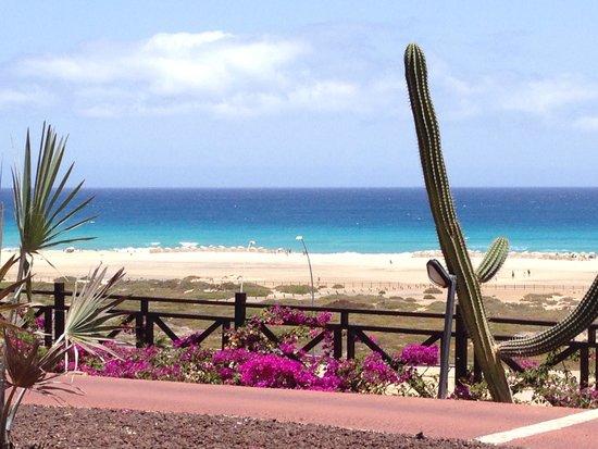 Barcelo Jandia Playa: Jandia playa