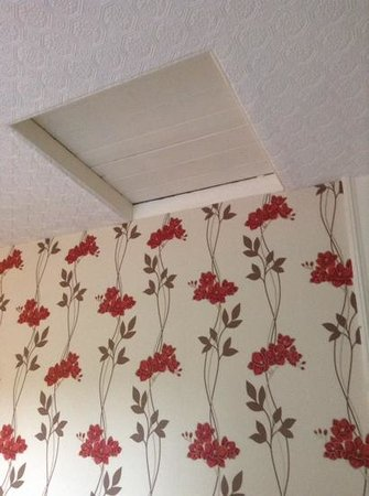 Alison House Hotel: the above bed loft hatch