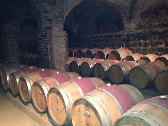 Santa Rita Winery: Adega Santa Rita