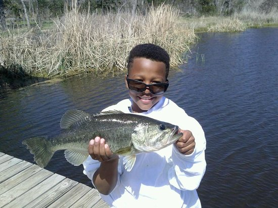 Cedar Creek, TX: Wowee! Little guy with a Big Bass!