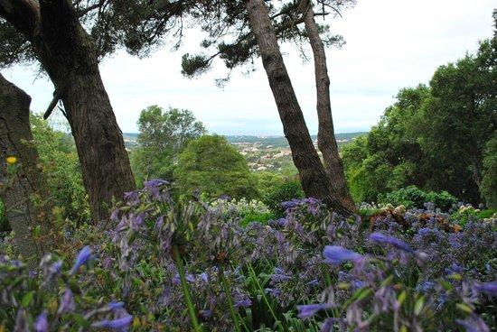 Almaa Sintra Hostel: garden view