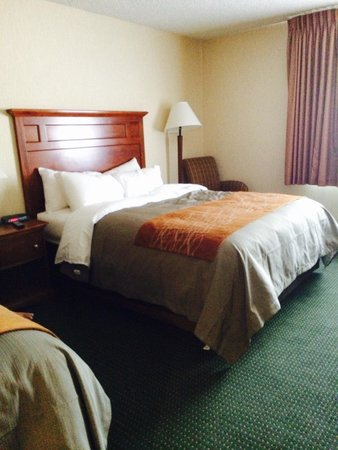 Comfort Inn Near Vail Beaver Creek: Queen bed
